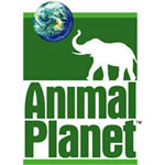 Animal Planet Channel Image